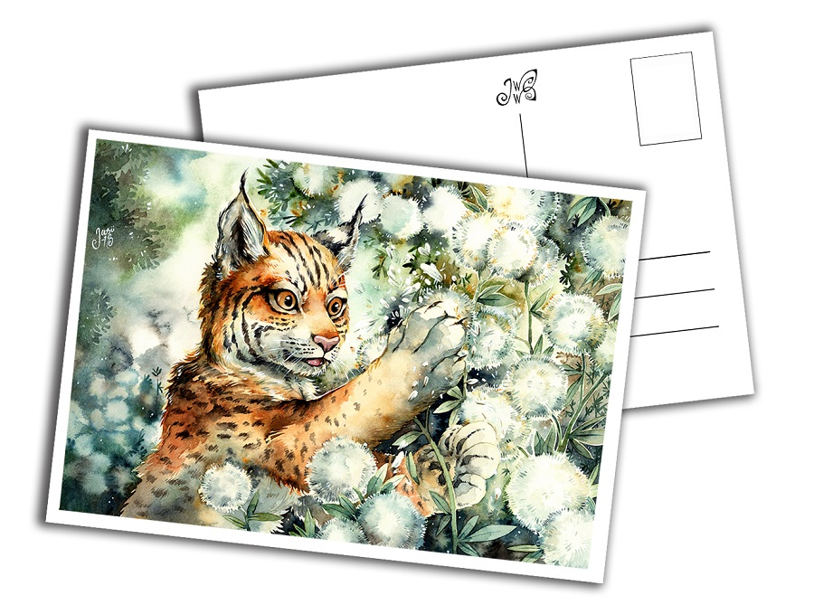 Card - Lynx Cub