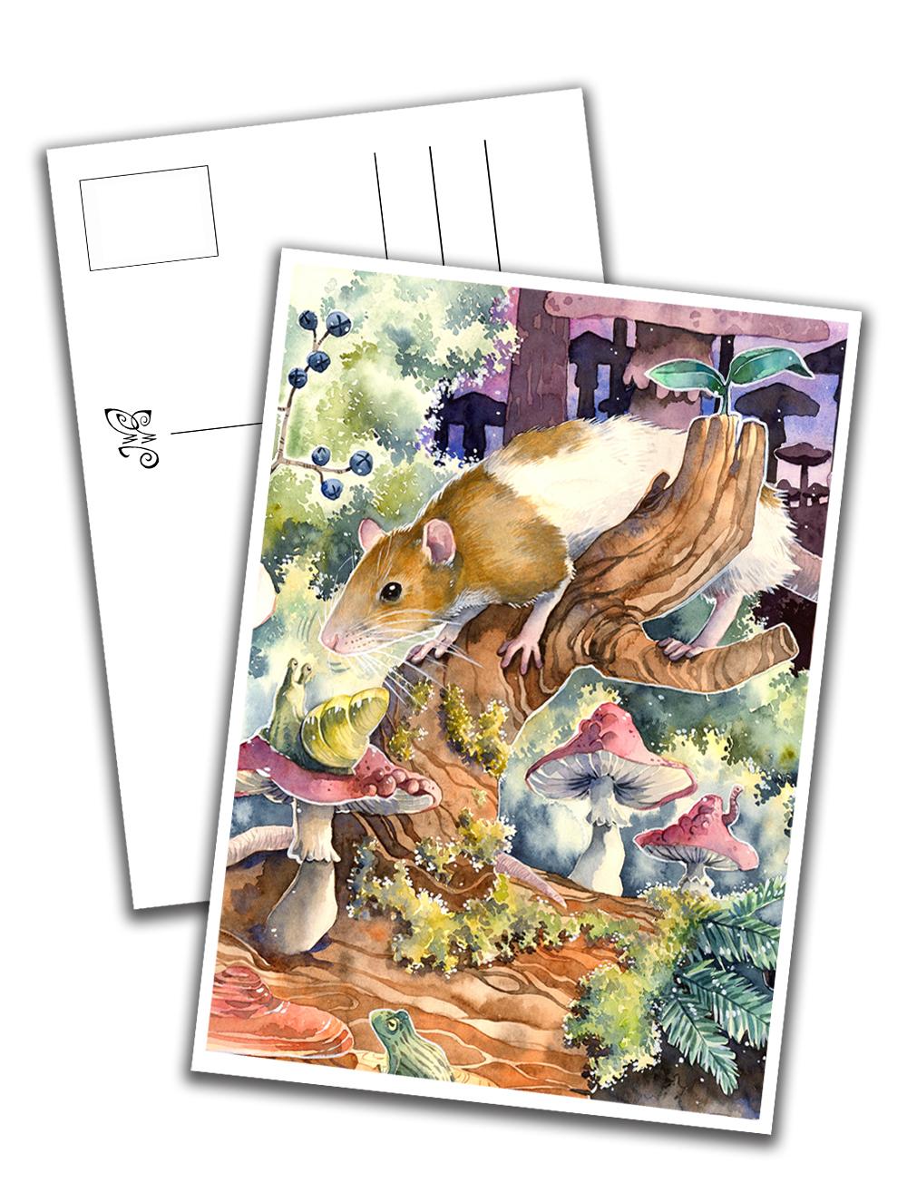 Card - Rat Sniffing a Snail