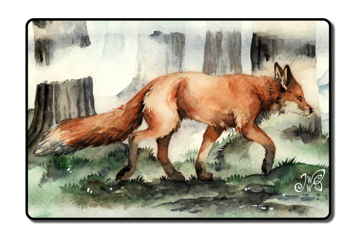 Fox in the Mist - Magnet