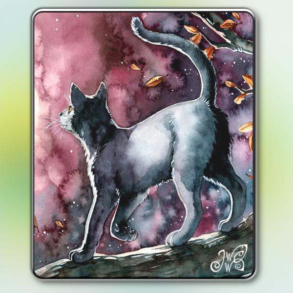 Magnet - Black Cat